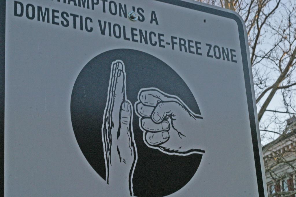 Domestic Violence Free Zone
